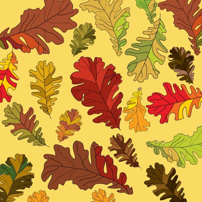 wk10_autumnfoliage